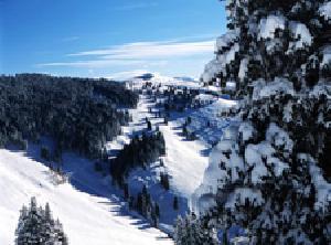 skireisen vail skiurlaub in vail usa. Black Bedroom Furniture Sets. Home Design Ideas